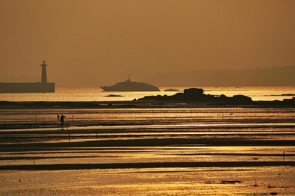 日落的洗净河口泥滩