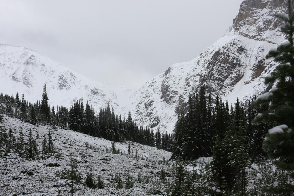 mount Edith Cavell and Angel Glacier in Jasper National Park