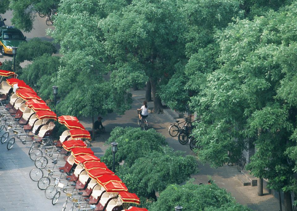 urban traffic and greening Beijing, China
