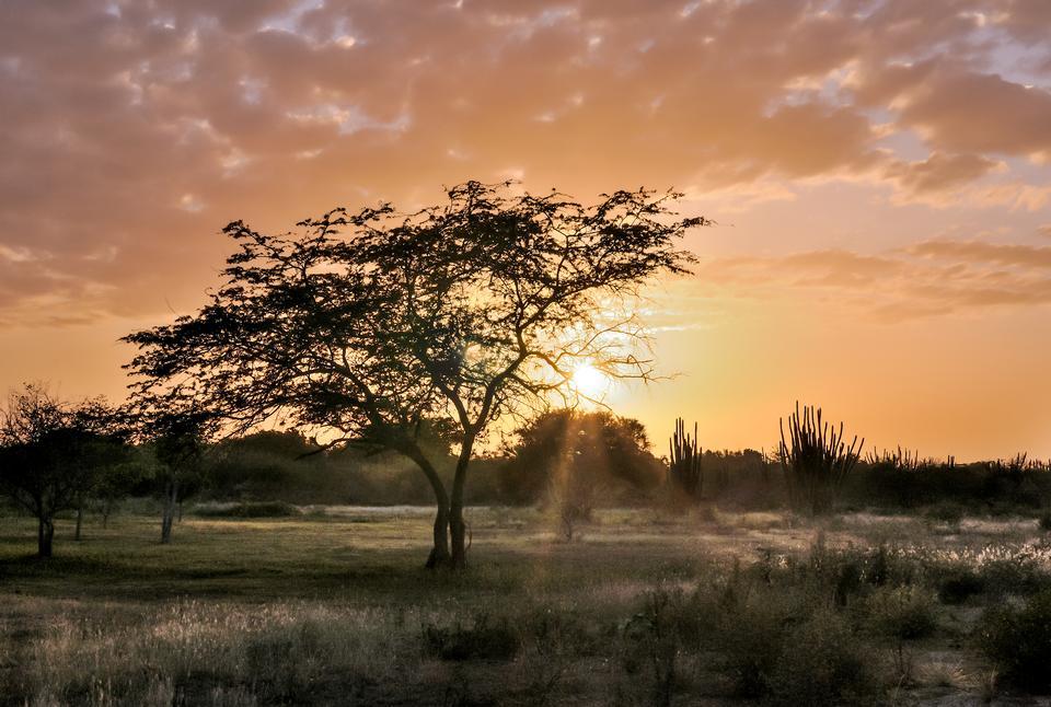 Backlit Margarita Island Sunset