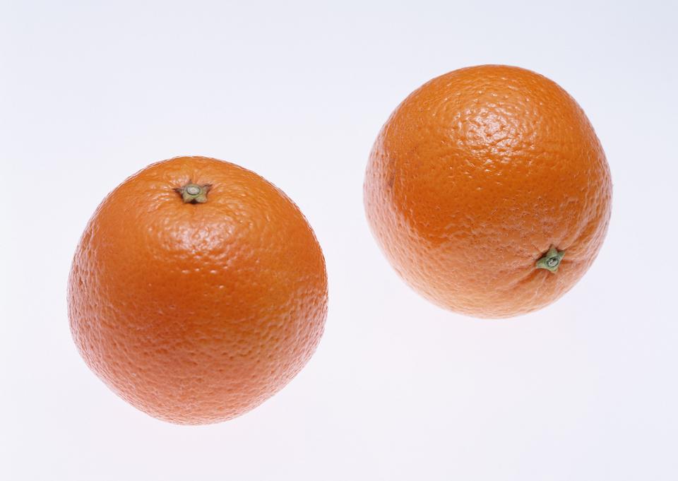 Citrus isolated on white background