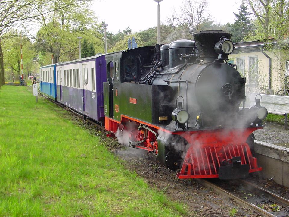 증기 기관 열차