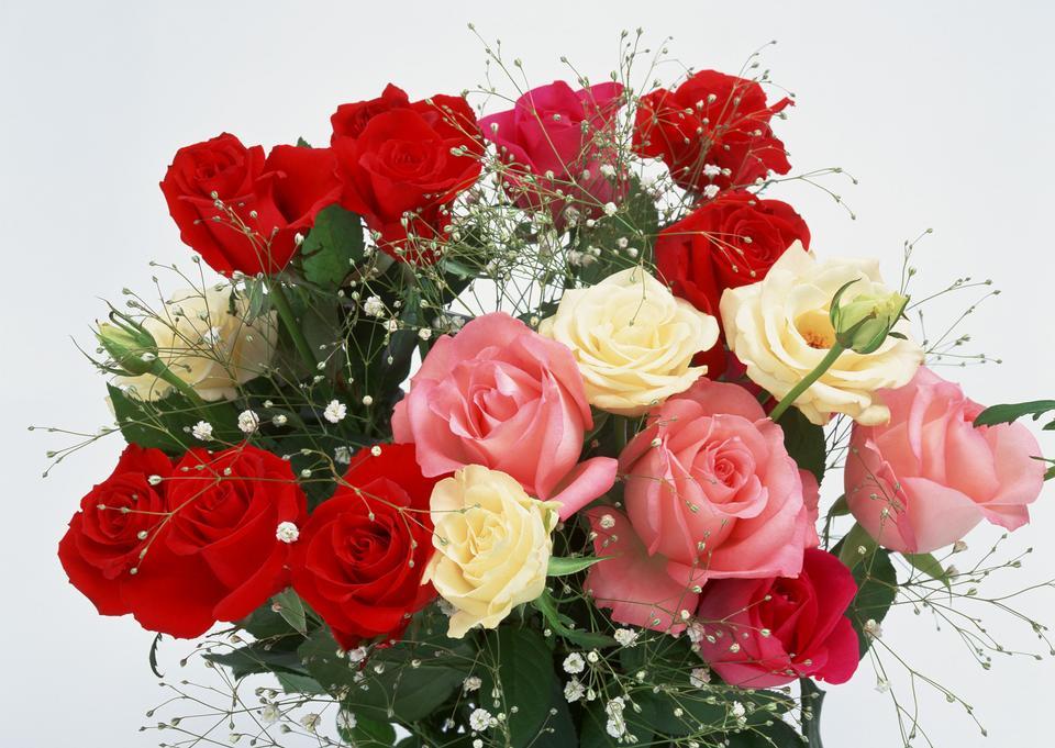 Strauß roter Rosen und weißen Blüten auf weißem