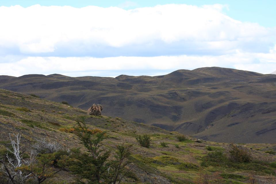 托雷斯DEL潘恩,巴塔哥尼亞,智利