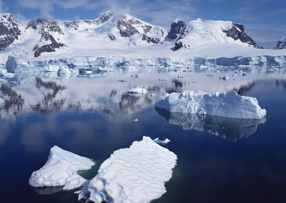 Glacial lake full of floating icebergs
