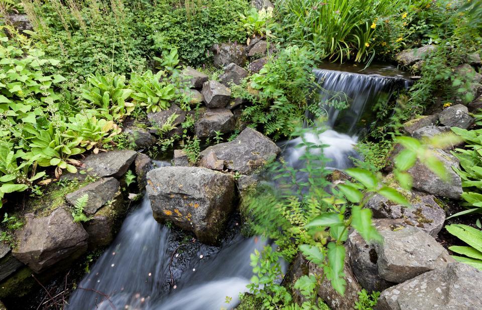 小瀑布在英国爱丁堡皇家植物园