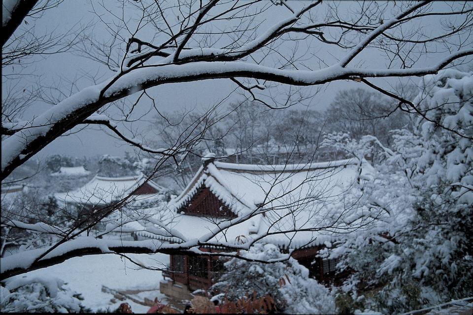 寺在韓國期間,降雪