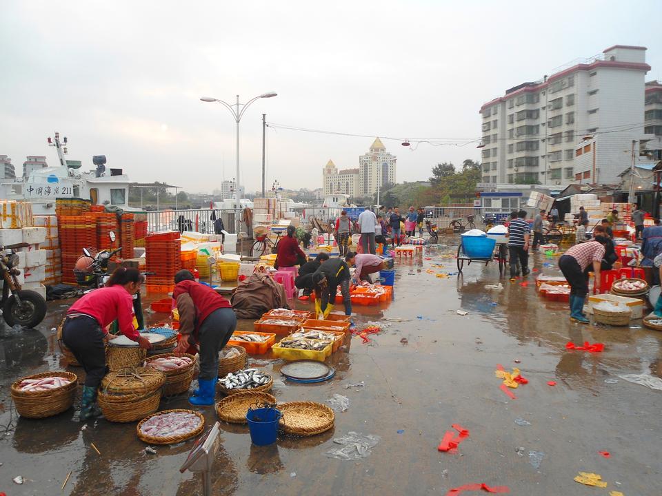 鱼市海口新港,海口市,海南省,中国