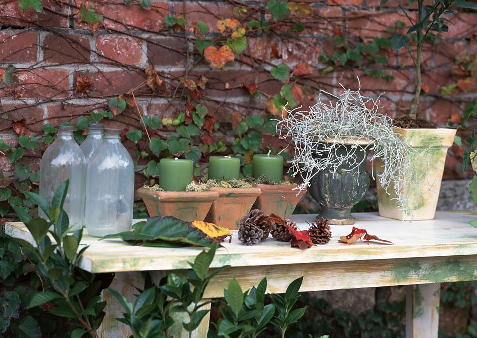 Gartenarbeit Stilleben mit Blumentöpfe, Gartengeräte und Pflanzen