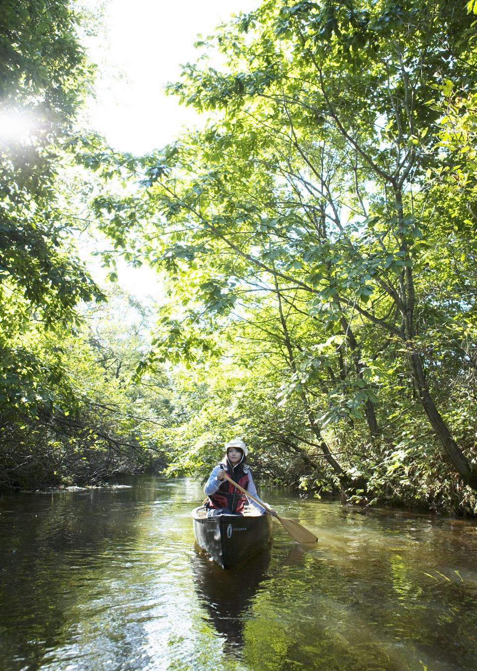woman with kayak on forest river