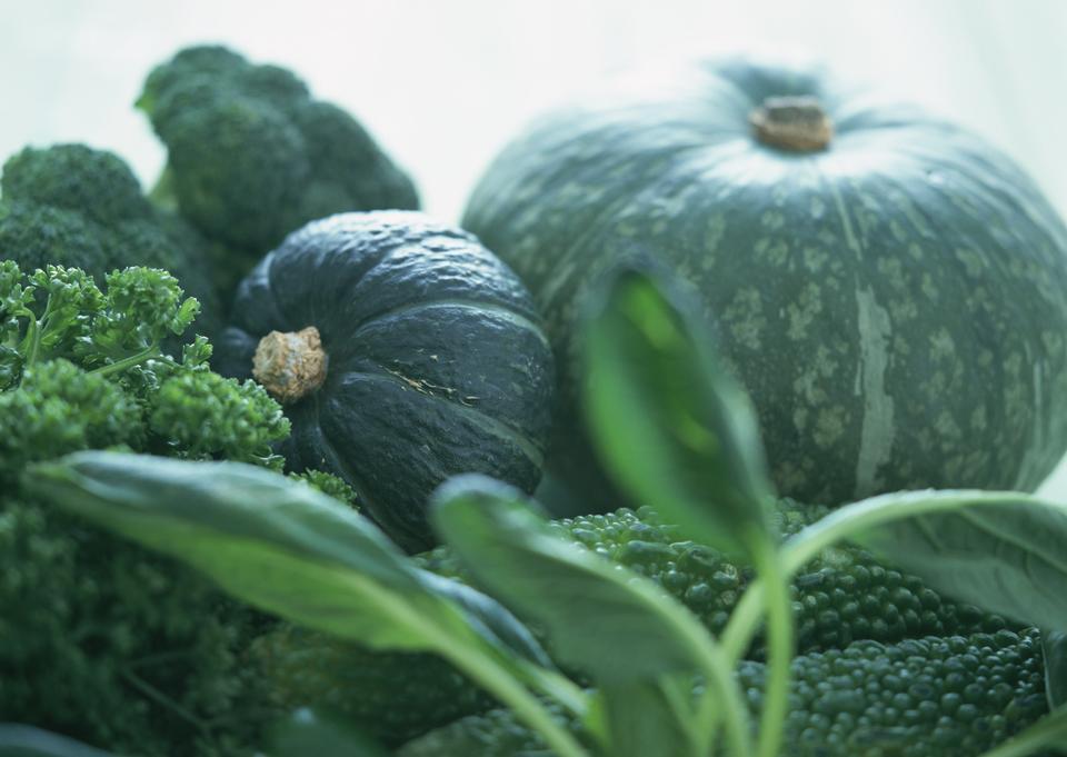 集绿色蔬菜