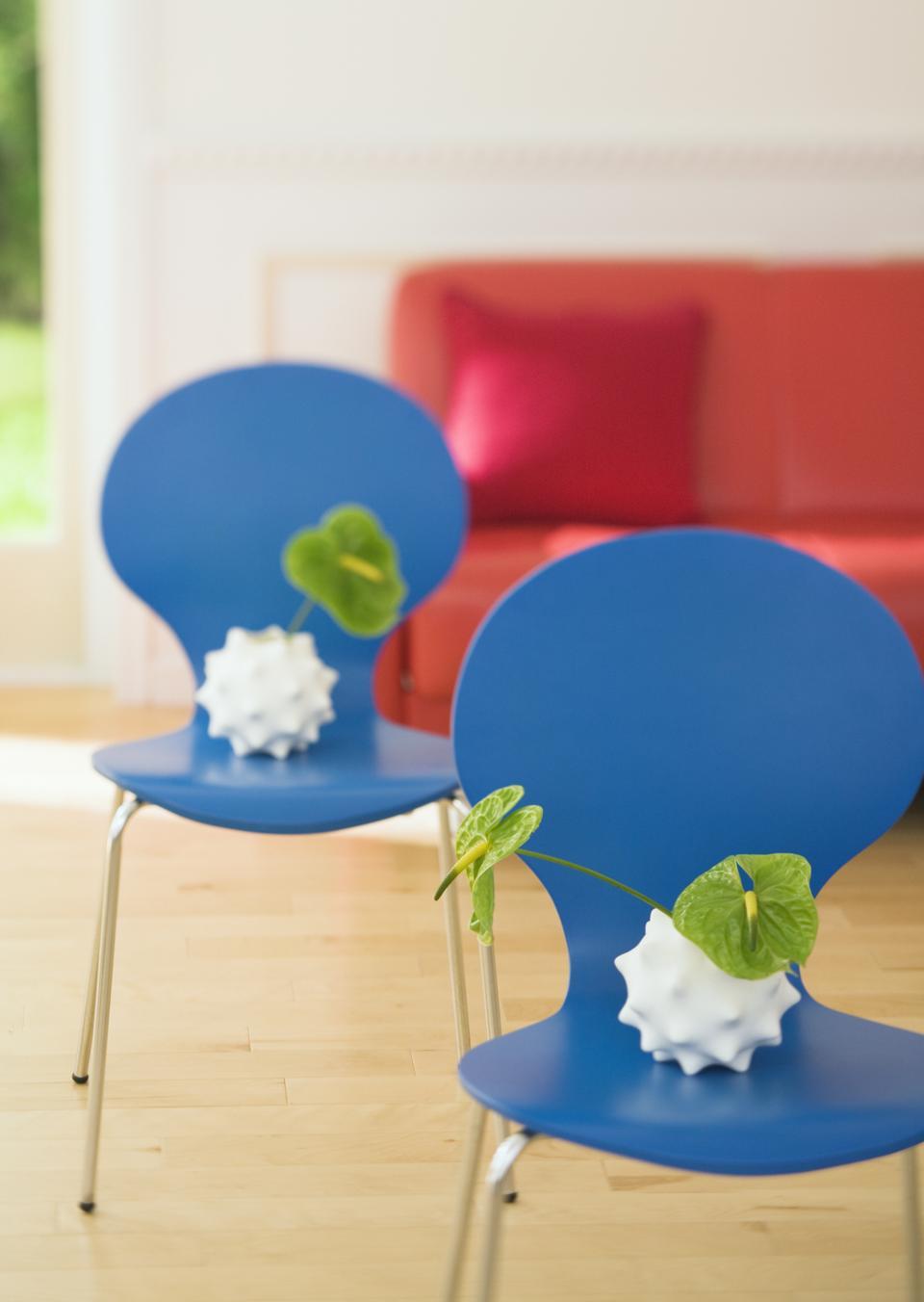 Anthurium vert décoration de la maison