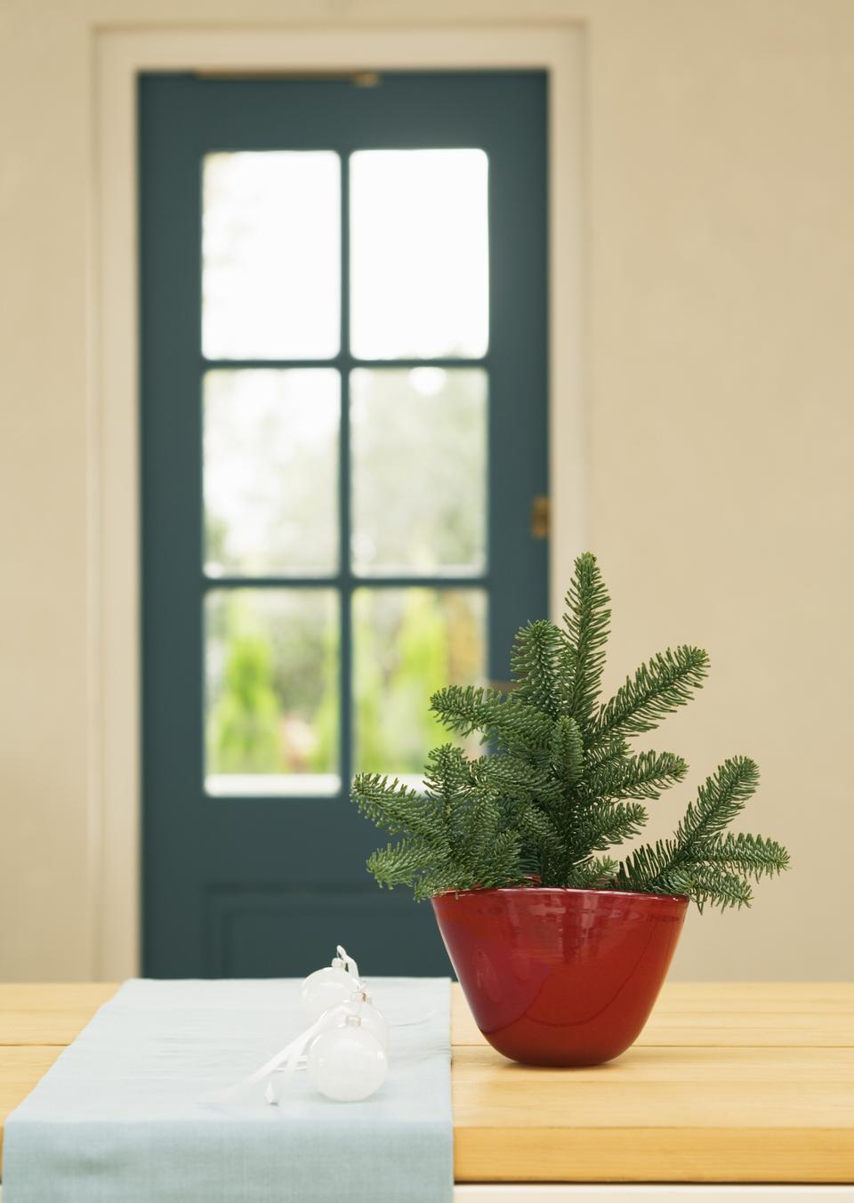 木製のテーブルの上に鍋にハート形のクリスマスの装飾