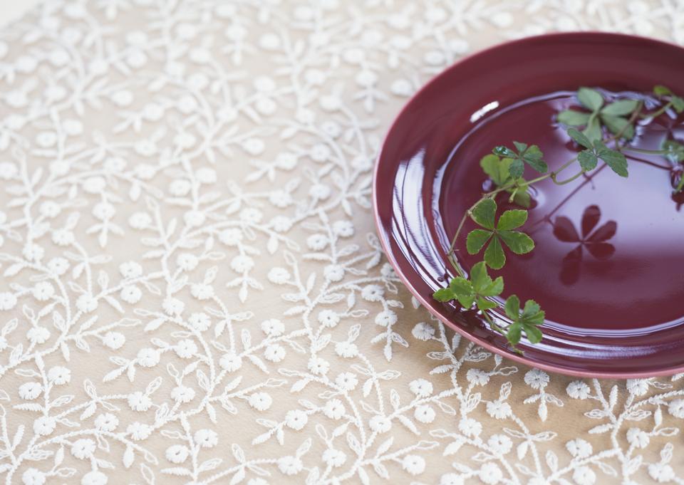 Plant on dish
