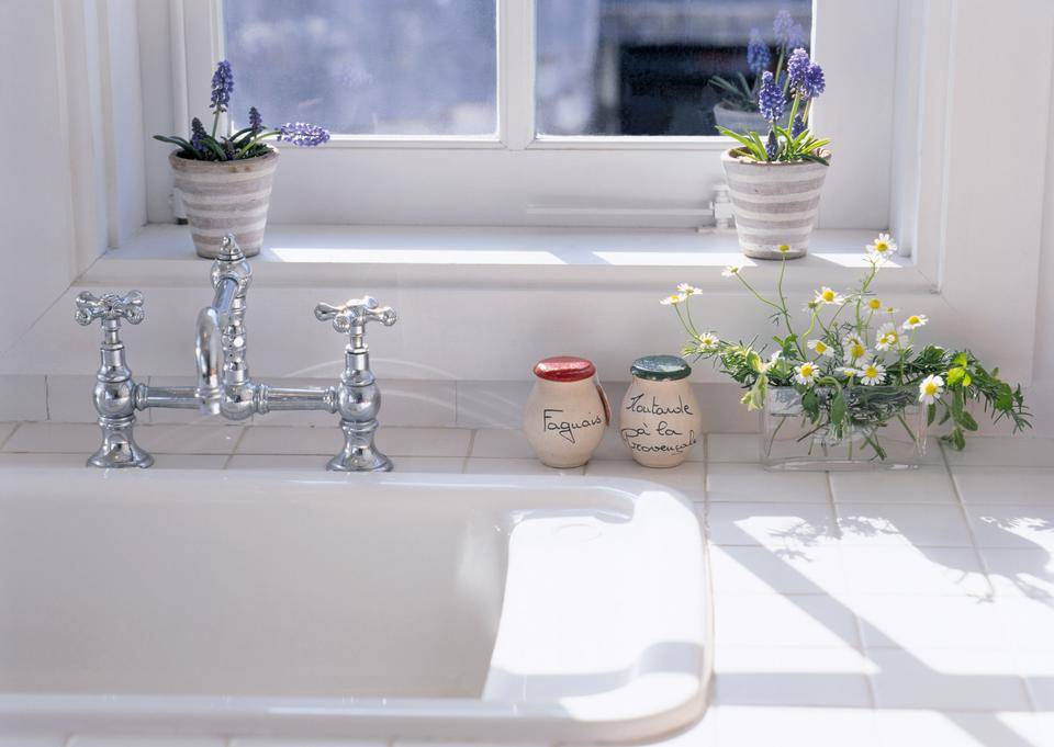 plants on window sill in domestic kitchen