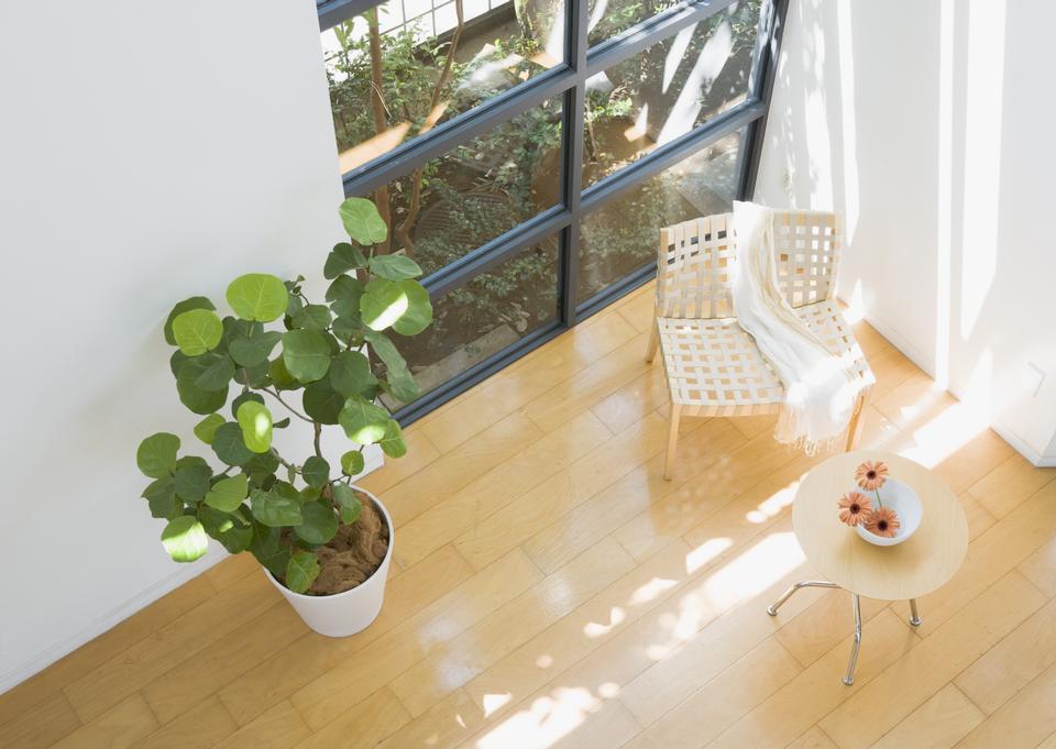 木製の床とモダンなリビングルーム