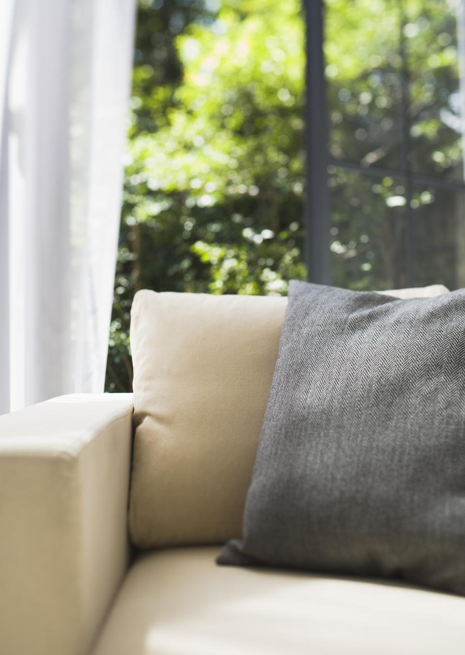 Decorative pillows on a casual sofa in the living room
