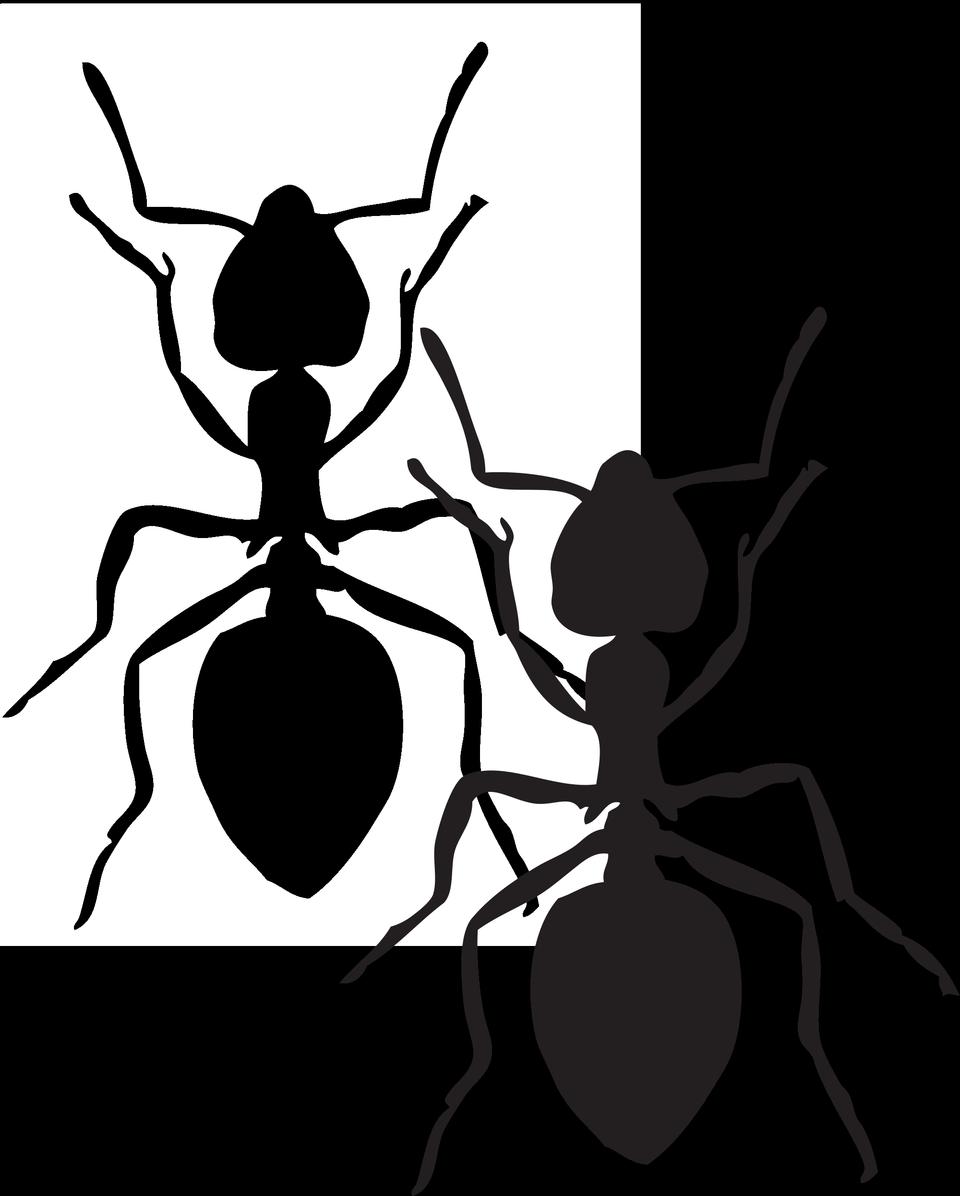 蚂蚁剪贴画