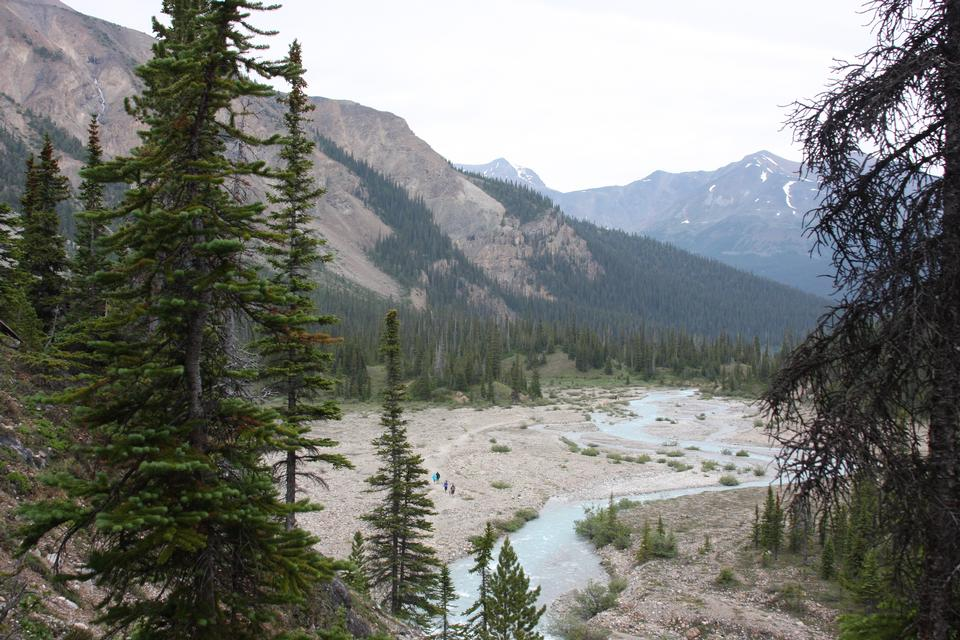 Temple pass trail in Banff National Park, Alberta, Canada