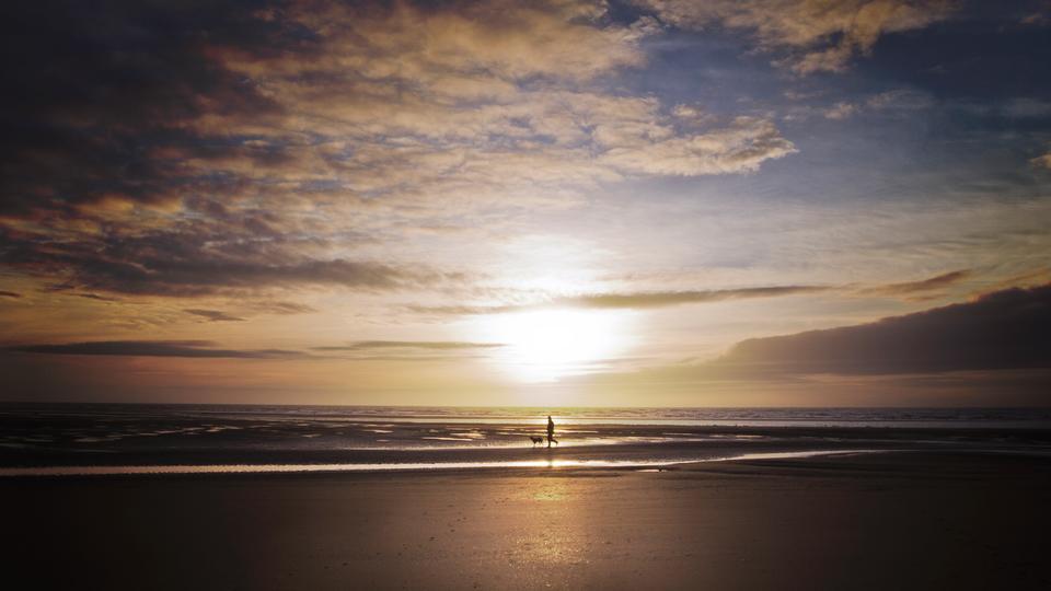 man walking wit dog on beach