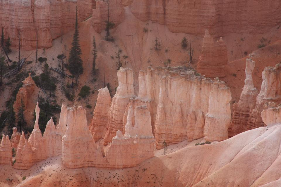 Bryce Canyon Hoodoos all'alba, Utah
