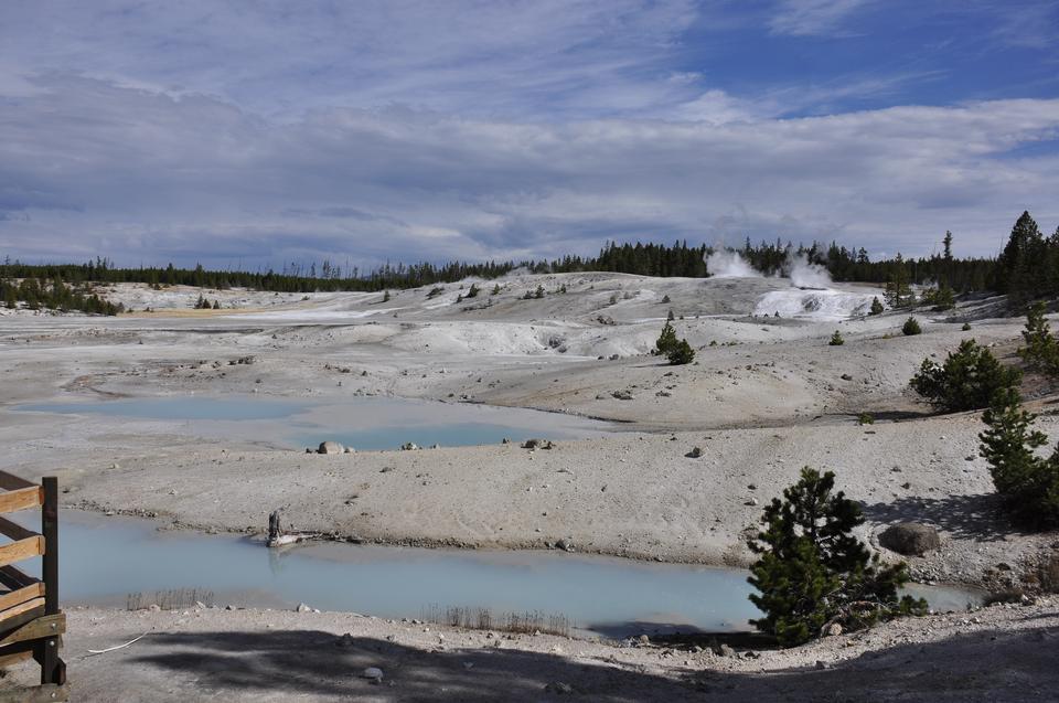 Il campo termico al parco nazionale di Yellow Stone