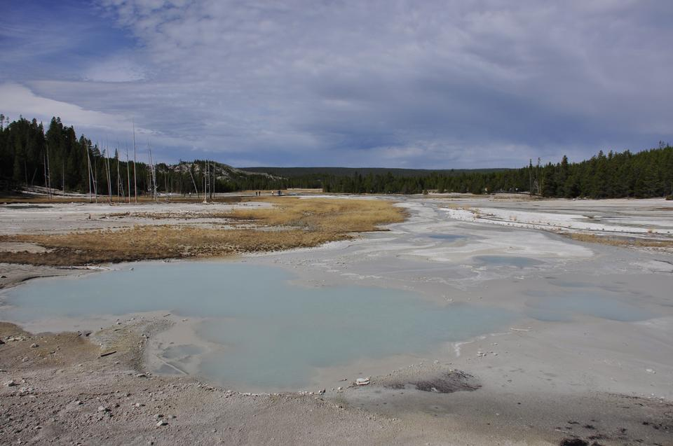 Thermal Field at Yellow Stone National Park