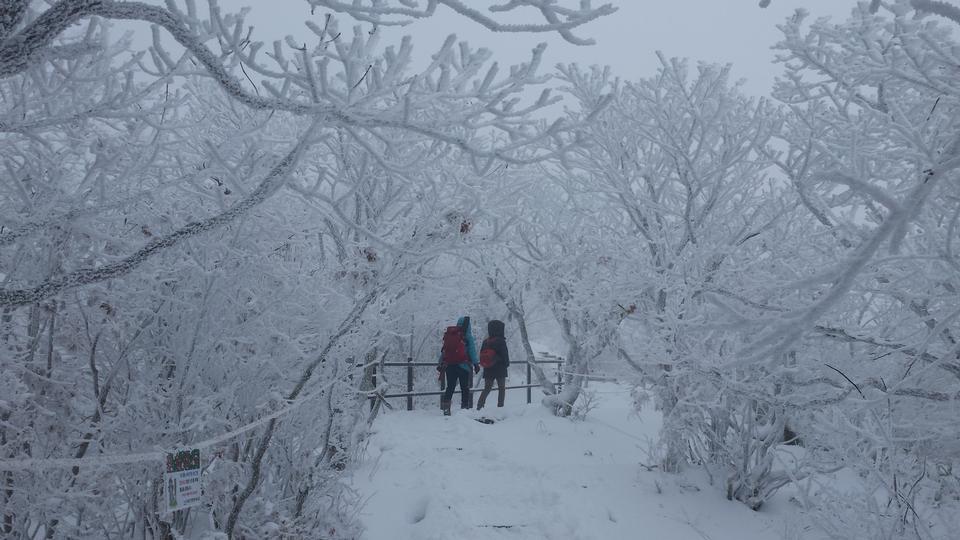 Schöne Landschaft und Skifahren um Deogyusan, Südkorea