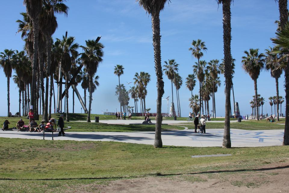 太平洋的观点和海滩威尼斯海滩