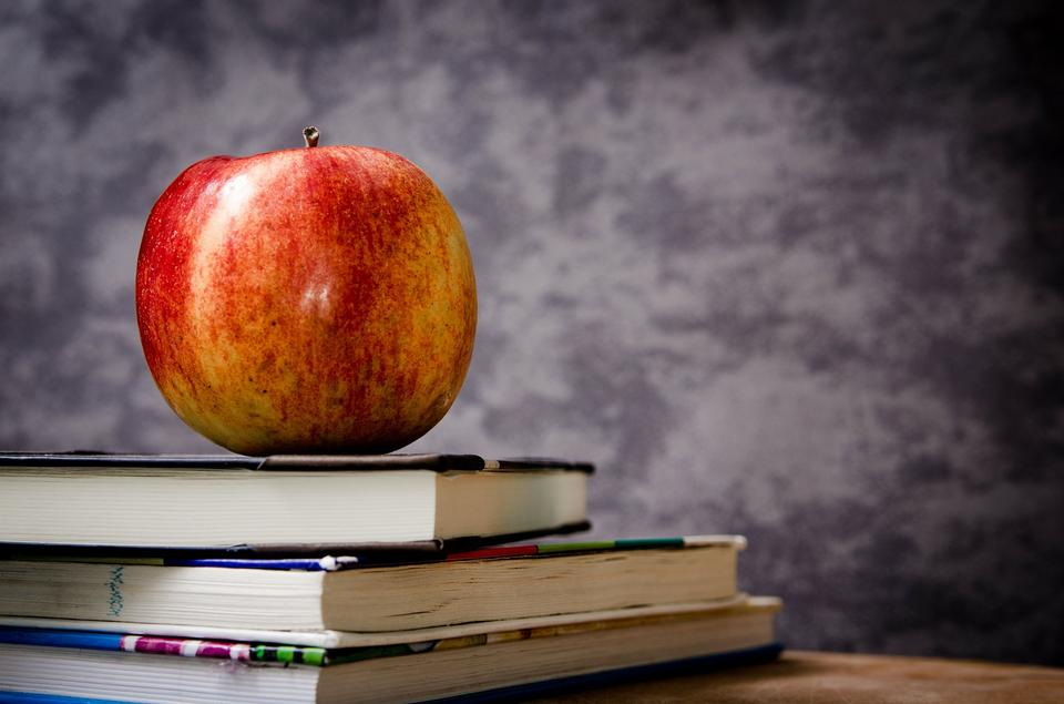 분필 보드와 책에 휴식 빨간 사과