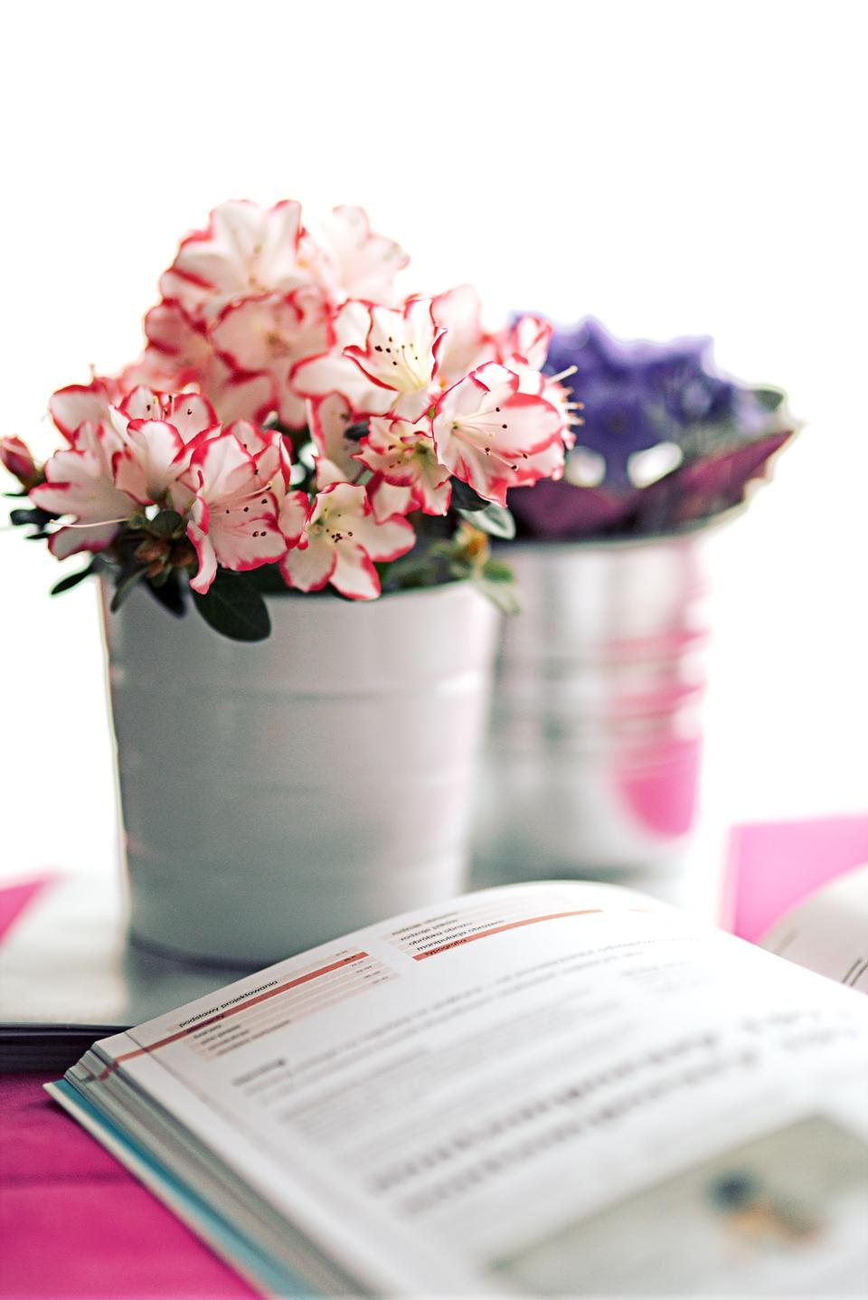 Beautiful fresh spring flowers with stack of books