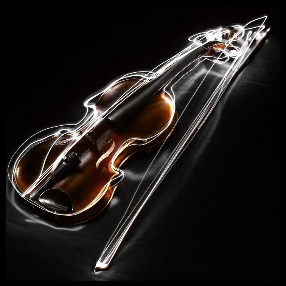 乐团特写小提琴乐器