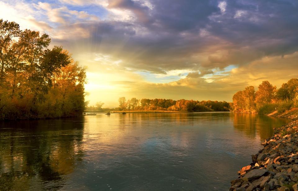 戲劇性的日落大海和森林秋天