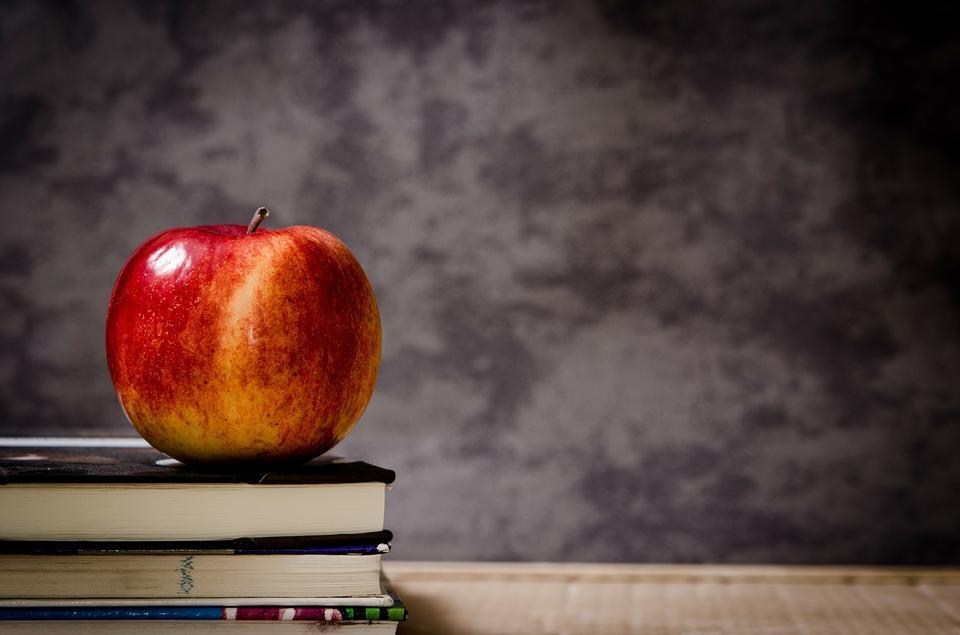 roten Apfel auf dem Buch mit Kreidetafel als Hintergrund stillsteht