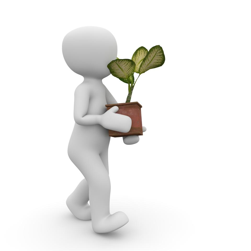 3d man holding small tree in hands concept in white