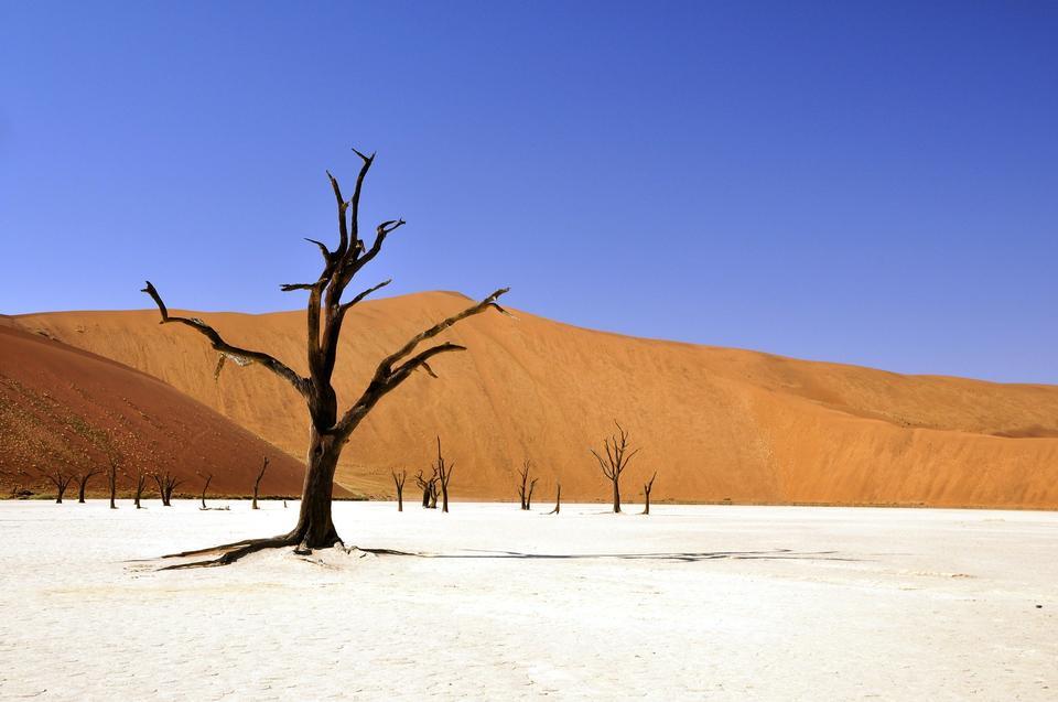 Мертвая Vlei, Sossusvlei, Намибия