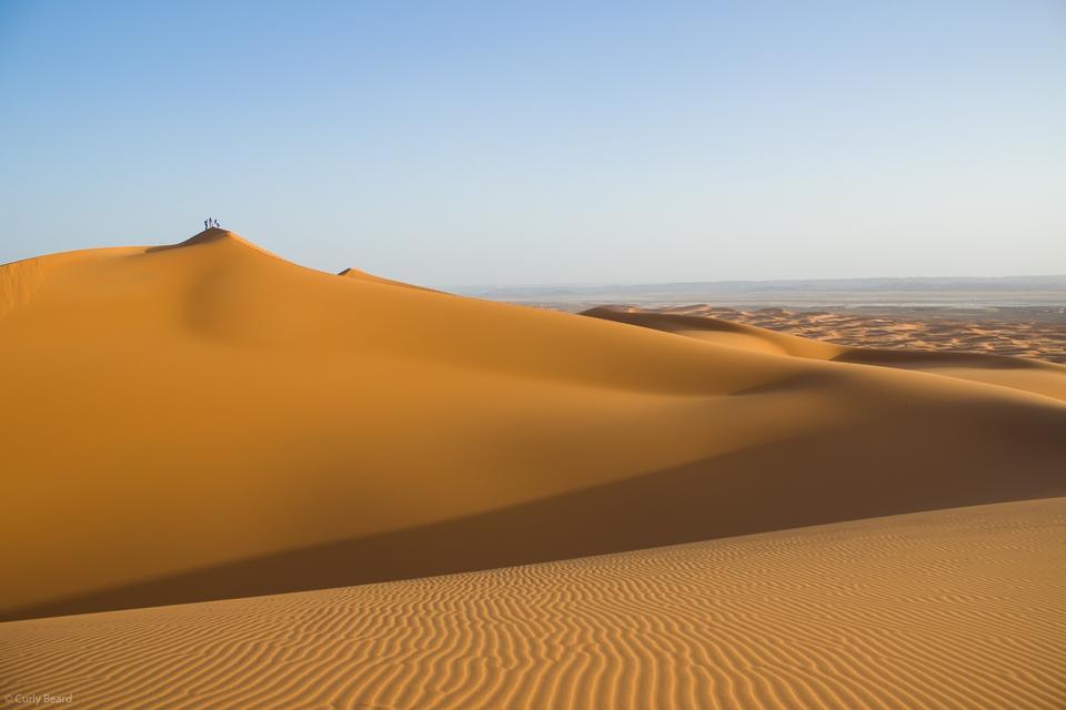 Dunes of Thar Desert. Sam Sand dunes.