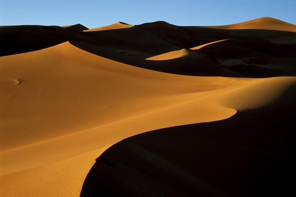 Sand dunes at sunset in the Sahara Desert.