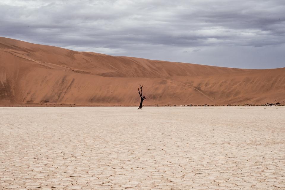 白砂漠で白い砂漠の形成