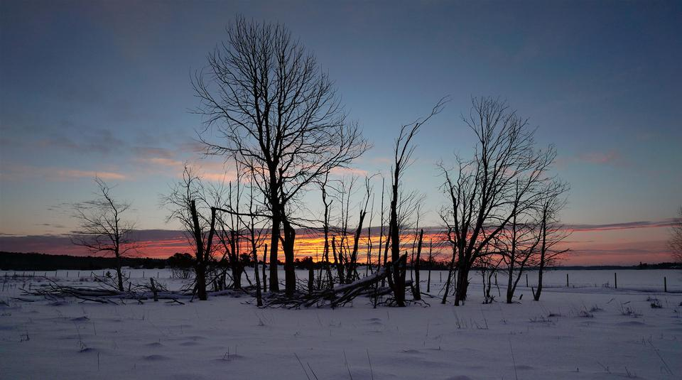 Beautiful winter landscape at sunset with snow