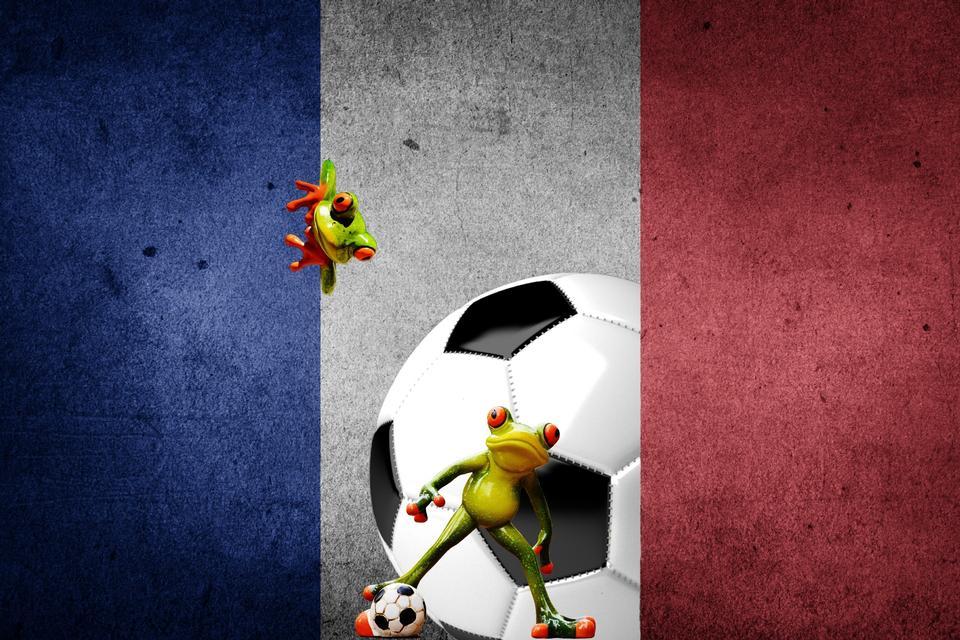 2016年欧洲球和法国国旗法国足球锦标赛
