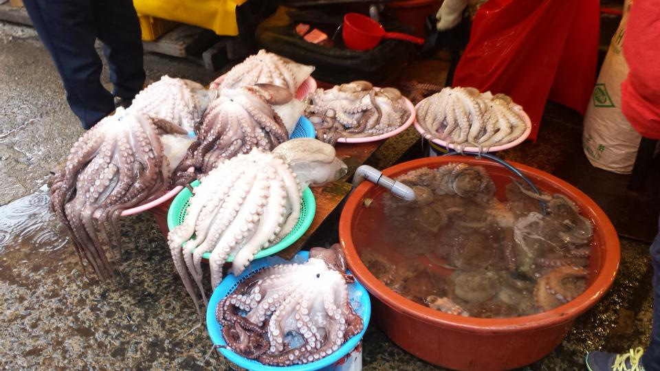 韓国・釜山チャガルチ魚市場