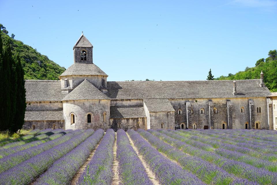 France, Provence, Abbaye Notre-Dame de Senanque,