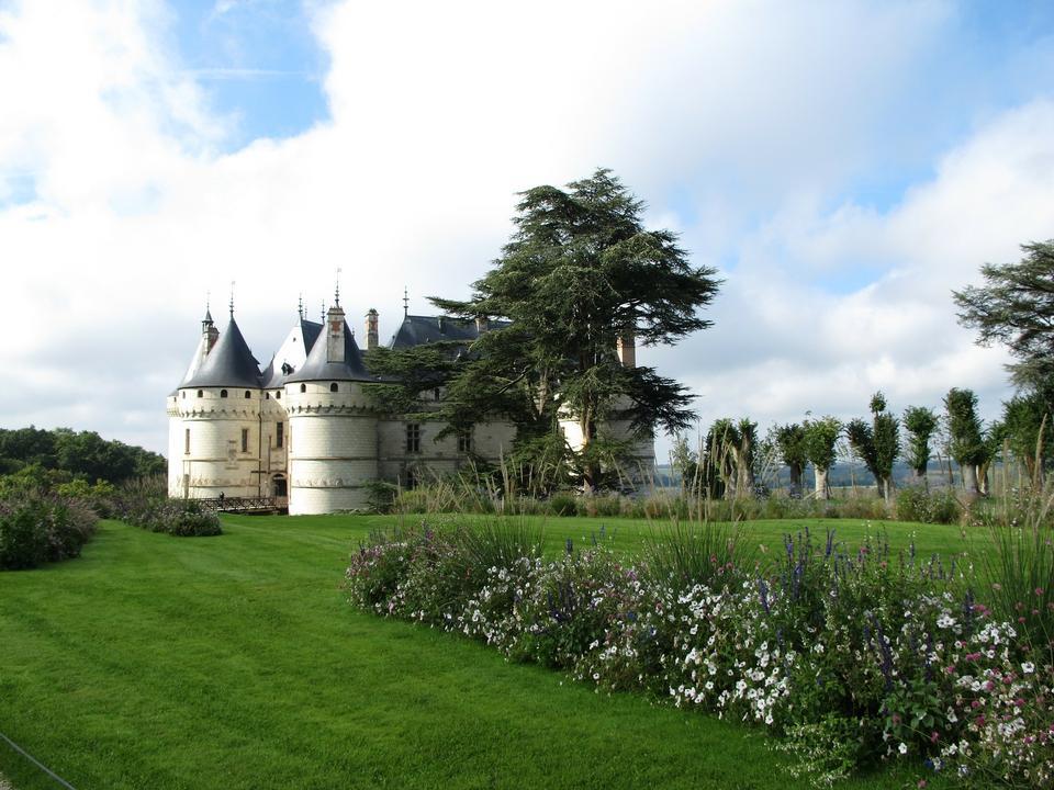 酒莊肖蒙城堡盧瓦爾河法國