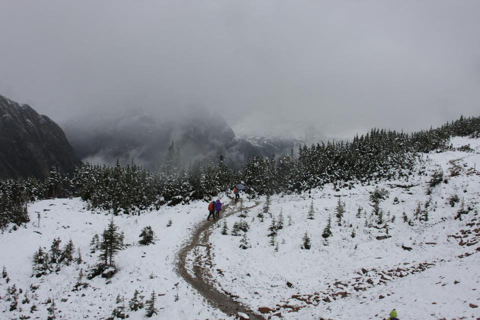 Mount Edith Cavell. Cold start of autumn in Jasper Park