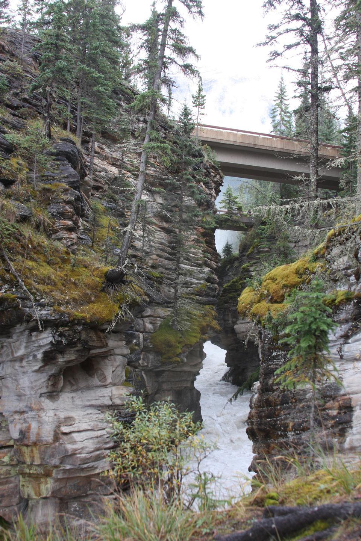 Mt. Edith Cavell, Canadian Rockies, Canada