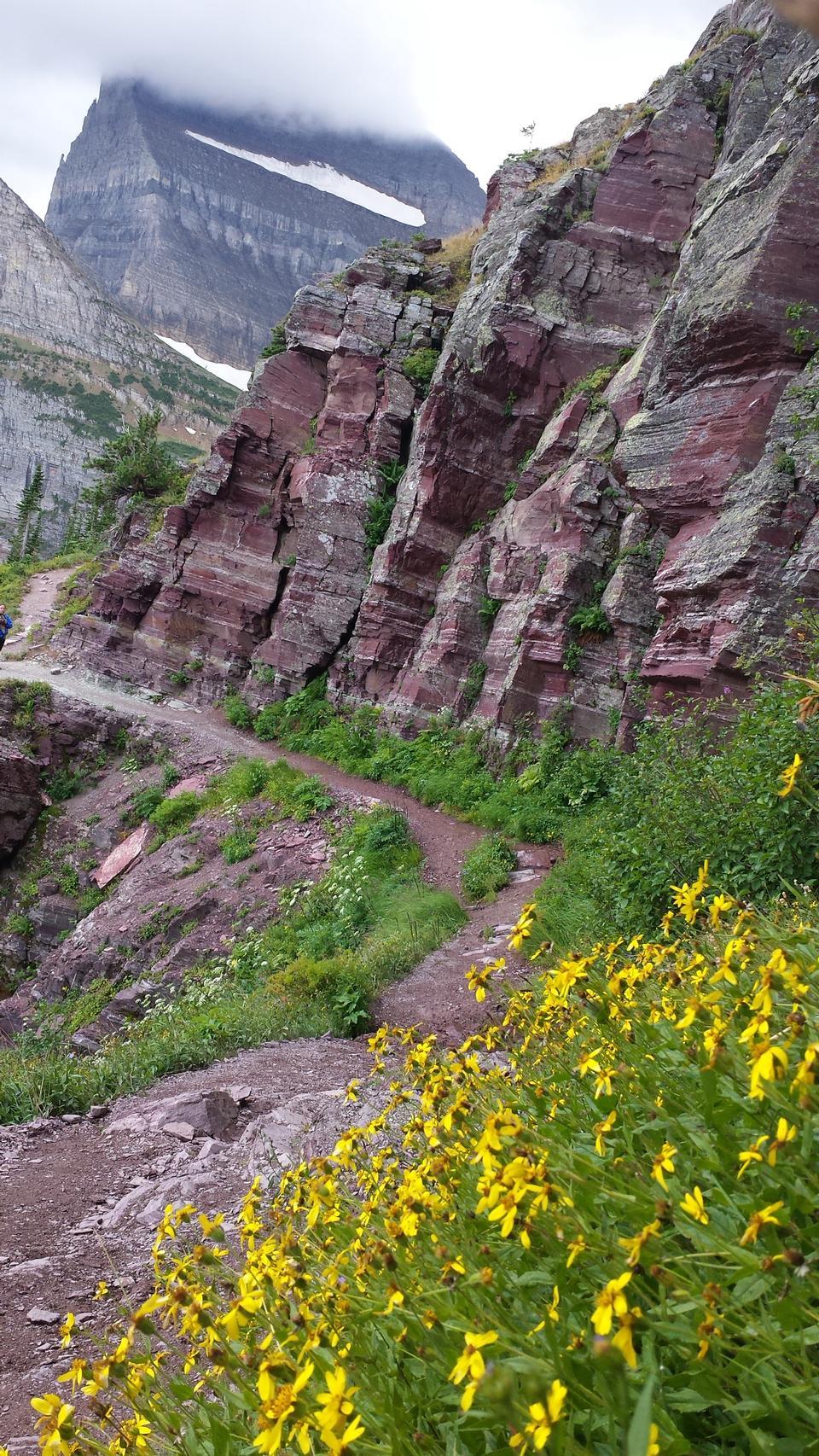 Trail in Glacier National Park, Montana