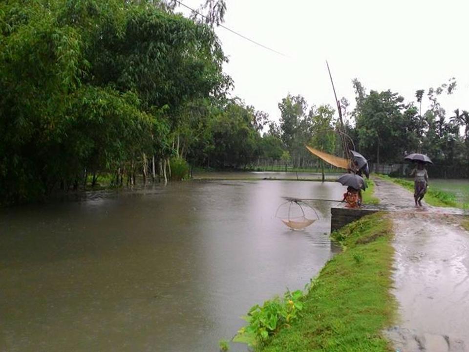 雨の日にバングラデシュの村。