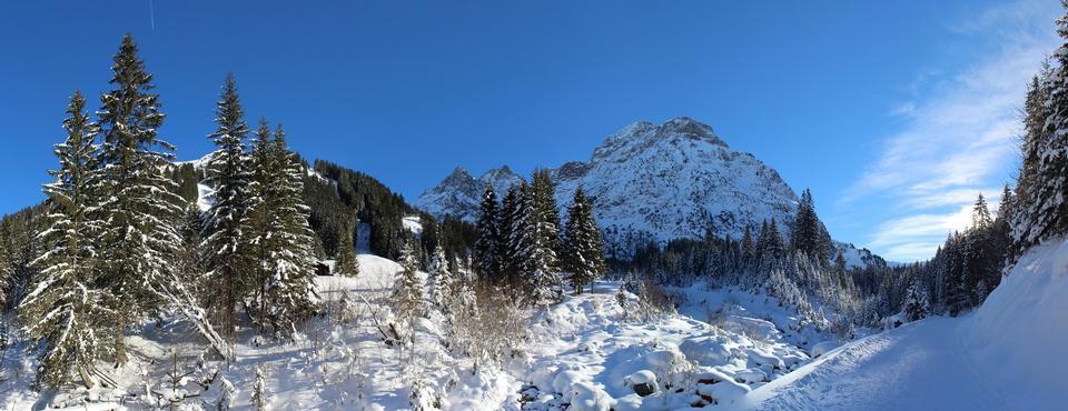 阿尔卑斯山德国奥伯斯特多夫景观自然旅游