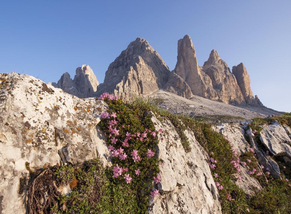 Misurina range in National Park Tre Cime di Lavaredo. Dolomites,